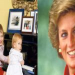 """Diana, nuestra madre"": Los príncipes Harry y William mostraron fotos inéditas de su madre"